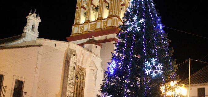 Niños de todos los colegios decorarán un árbol de Navidad gigante